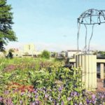 Human Rights Garden enters second phase