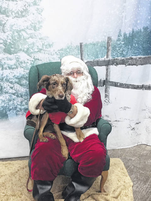 Lucy Mae, 3, gets her picture taken with Santa.