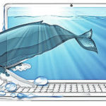 Scammers have a whale of a time with personal data